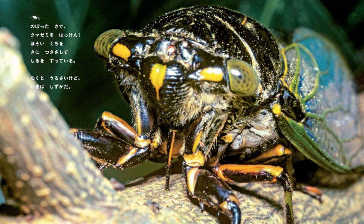 絵本「アリのたんけん」の一コマ3