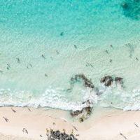 海の日におすすめ!海がテーマの人気絵本特集