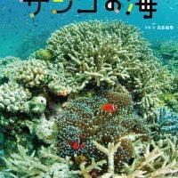 絵本「サンゴの海」の表紙