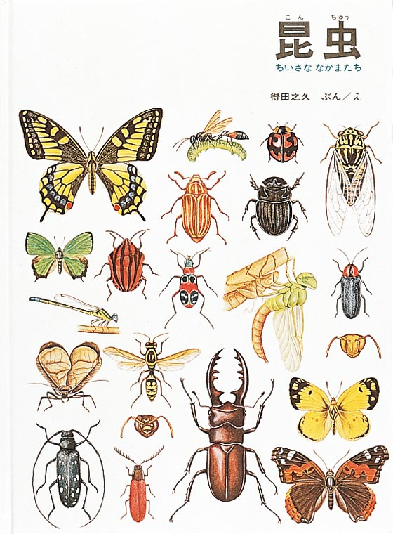 絵本「昆虫 ちいさななかまたち」の表紙