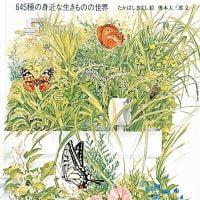 絵本「夏の虫 夏の花 645種の身近な生きものの世界」の表紙