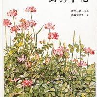絵本「野の草花」の表紙