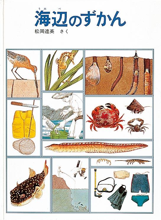 絵本「海辺のずかん」の表紙