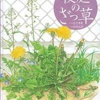 絵本「校庭のざっ草」の表紙