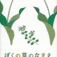 絵本「ぼくの草のなまえ」の表紙