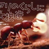 絵本「アリのくらしに大接近」の表紙