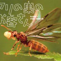 絵本「アリの巣のお客さん」の表紙