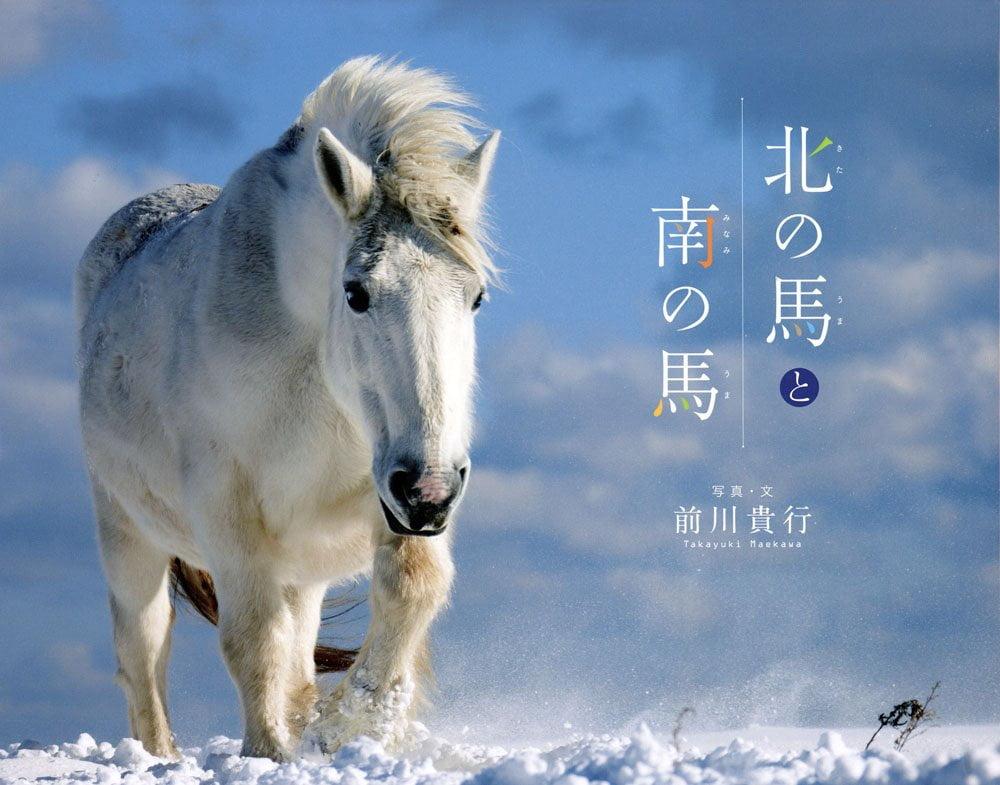 絵本「北の馬と南の馬」の表紙