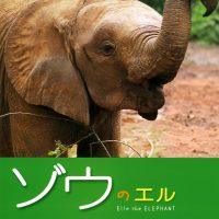 絵本「ゾウのエル」の表紙