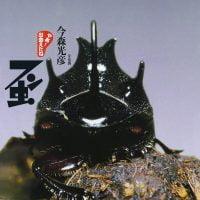 絵本「フン虫」の表紙