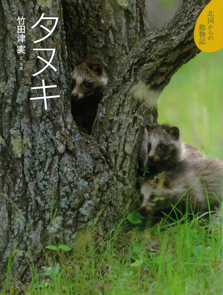 絵本「タヌキ」の表紙