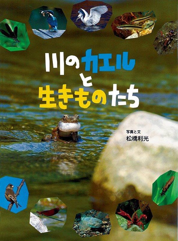 絵本「川のカエルと生きものたち」の表紙