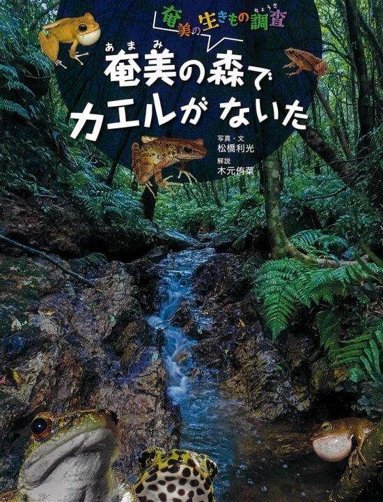 絵本「奄美の森でカエルがないた」の表紙