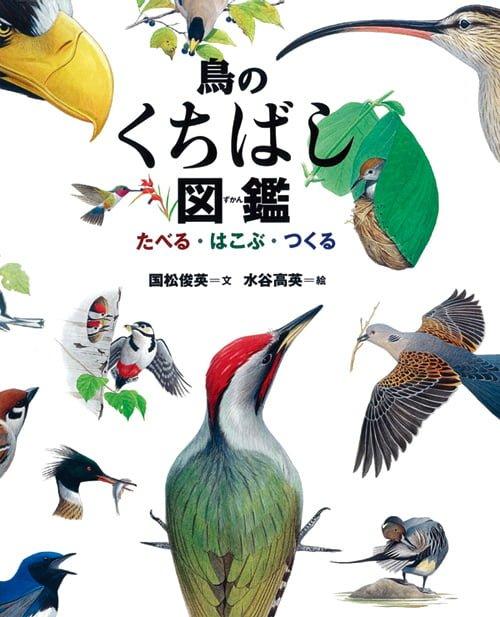 絵本「鳥のくちばし図鑑」の表紙