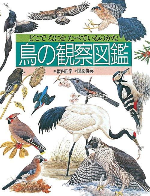 絵本「鳥の観察図鑑」の表紙