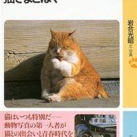 絵本「猫さまとぼく」の表紙