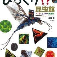 絵本「びっくり!?昆虫館」の表紙