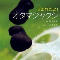 絵本「うまれたよ! オタマジャクシ」の表紙