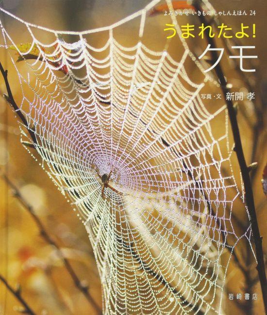 絵本「うまれたよ! クモ」の表紙