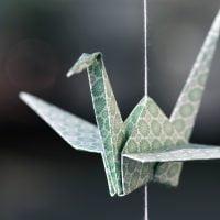 折り紙がテーマの絵本特集