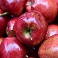 リンゴの絵本特集