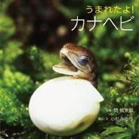 絵本「うまれたよ! カナヘビ」の表紙