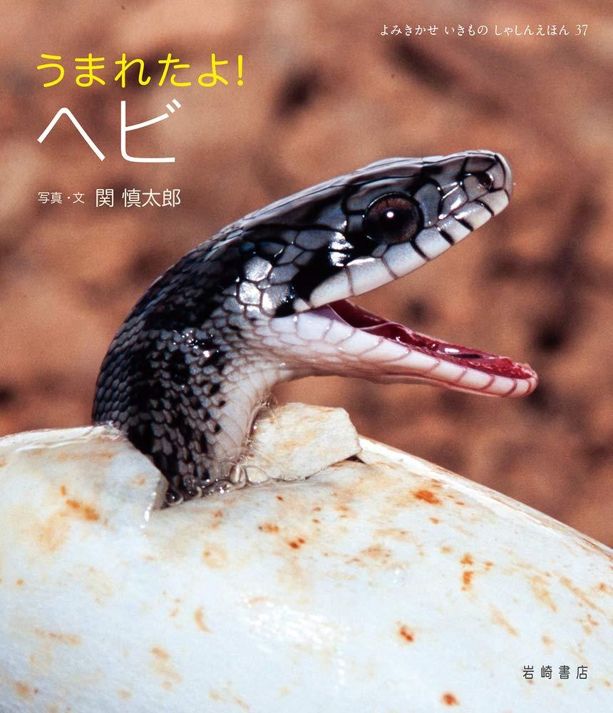 絵本「うまれたよ! ヘビ」の表紙