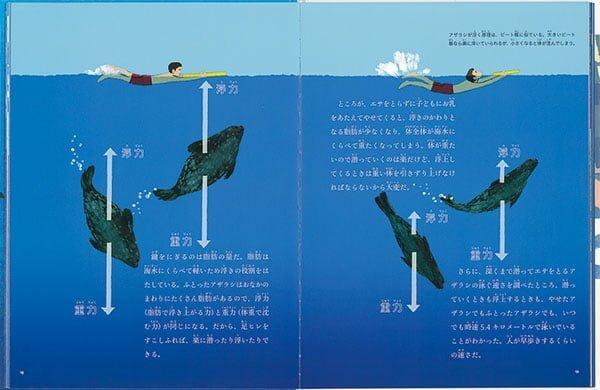 絵本「海の中のくらし」の一コマ2