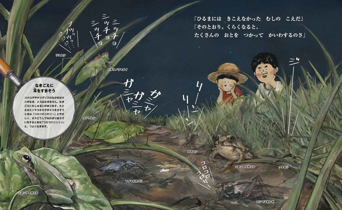 絵本「すごい虫ずかん ひるの虫とよるの虫」の一コマ4
