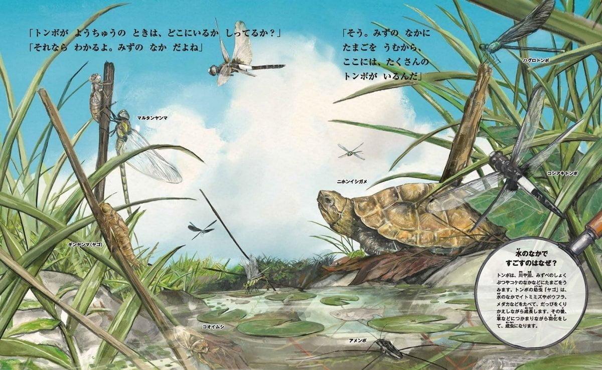 絵本「すごい虫ずかん ひるの虫とよるの虫」の一コマ5