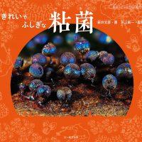絵本「きれいで ふしぎな 粘菌」の表紙