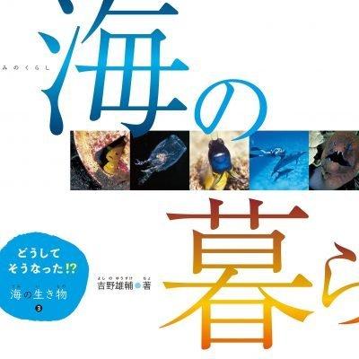 絵本「海の暮らし」の表紙