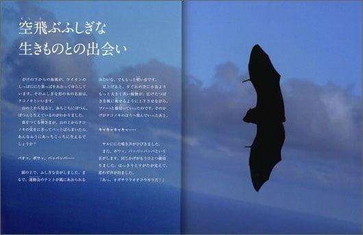 絵本「オガサワラオオコウモリ 森をつくる」の一コマ