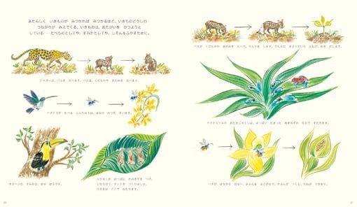 絵本「いろいろ いっぱい ちきゅうの さまざまな いきもの」の一コマ2