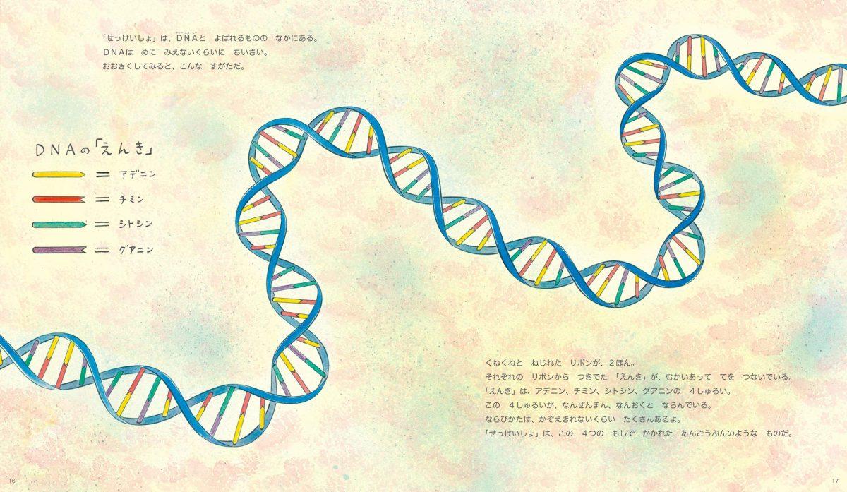 絵本「うまれて そだつ わたしたちの DNAと いでん」の一コマ2