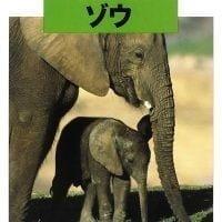 絵本「どうぶつの赤ちゃん ゾウ」の表紙